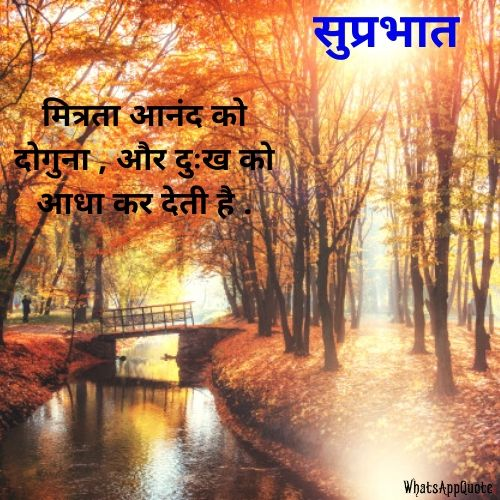 friendship quote in hindi
