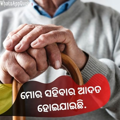 odia quotes image on life