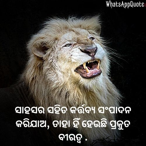 odia quotes for success