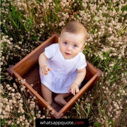 beautiful baby images for whatsapp dp