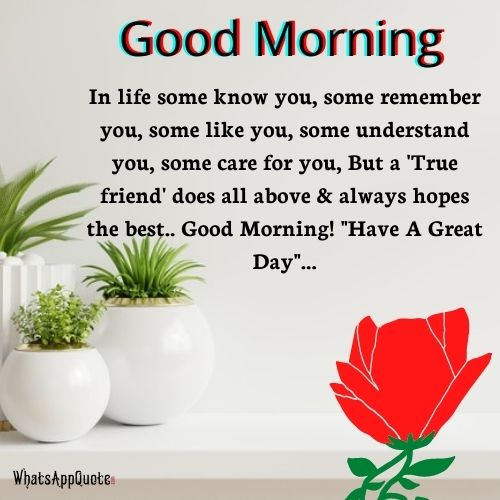 WhatsApp Good Morning Messages For Friends