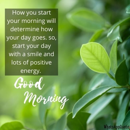 good morning messages for couple