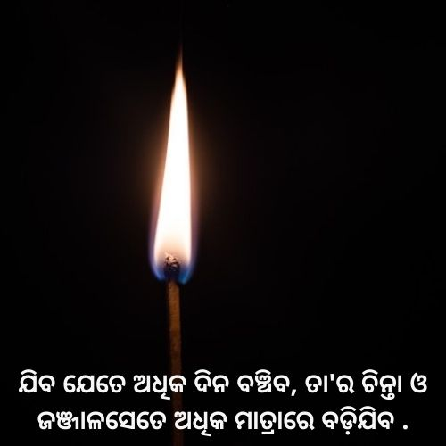 whatsapp odia quotes in hard work & success image download