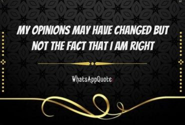 My opinions may have changed but not the fact that I am right!