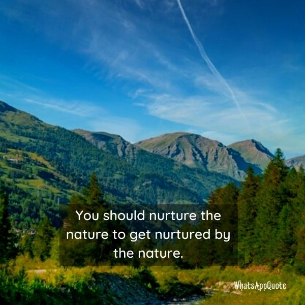 beauty of nature quotes